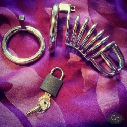 International Male Chastity Day | International Chastity Day Info