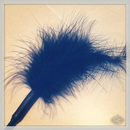 black-feather-tickler