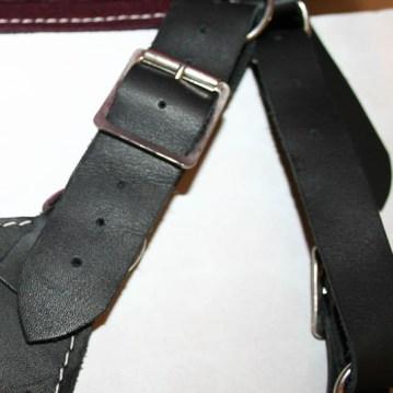 doxy-harness-4