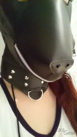 puppy hood phone pics cara sutra review-2