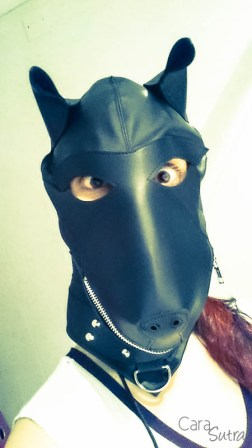 puppy hood phone pics cara sutra review-5