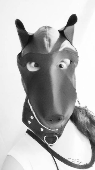 puppy hood phone pics cara sutra review-6