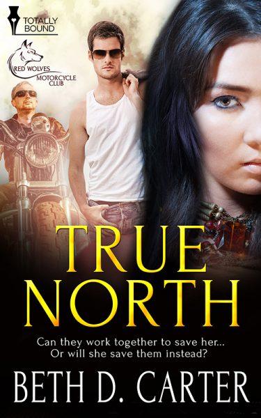 true north beth carter