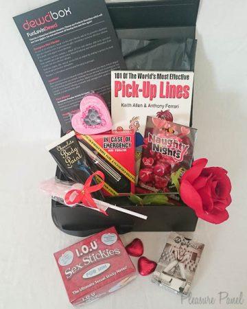 DewciBox Fun Loving Box Sex Toy Subscription Box Review Pleasure Panel