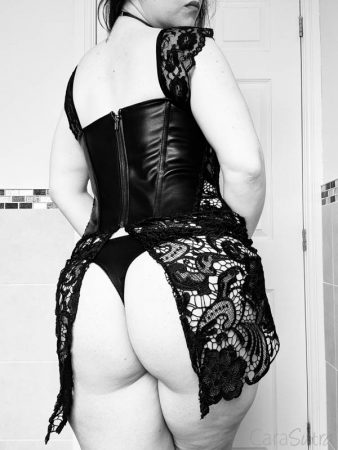 Dreamgirl Beyonce Faux Leather And Lace Corset Review