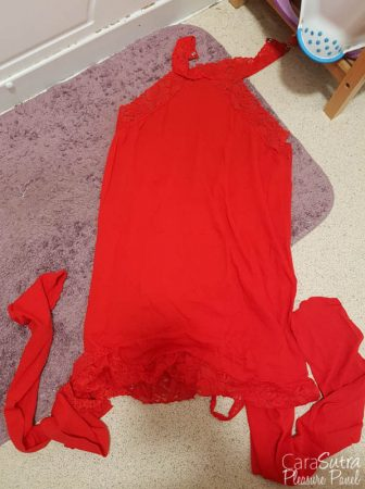 Dreamgirl Plus Size Red Dress Suspender Bodystocking Review