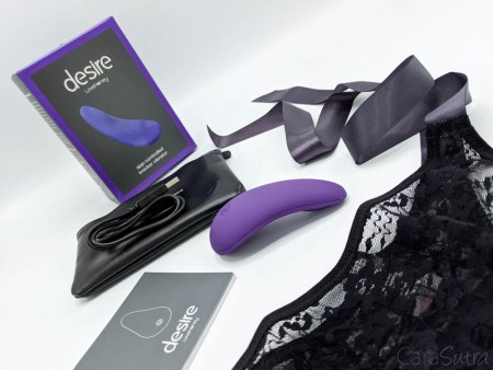 Lovehoney Desire App-Controlled Rechargeable Knicker Vibrator Review