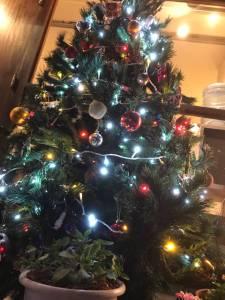 完成したCaratのクリスマスツリー