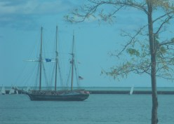117 - suddenly, a schooner