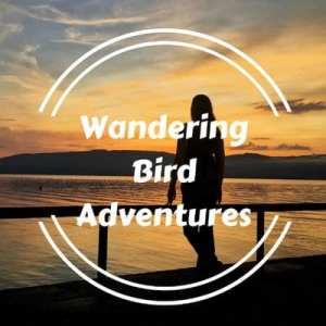 Wandering Bird Adventures