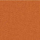 Caravita Acryl Pro Nature Apricot