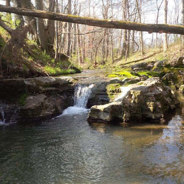 New-Williamson-County-Neighborhood-Water-Leaf-Carbine-And-Associates
