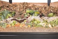 Balanced compost pile