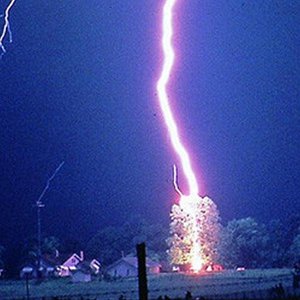 Carbon Monoxide Myths, lightning strikes tree near house