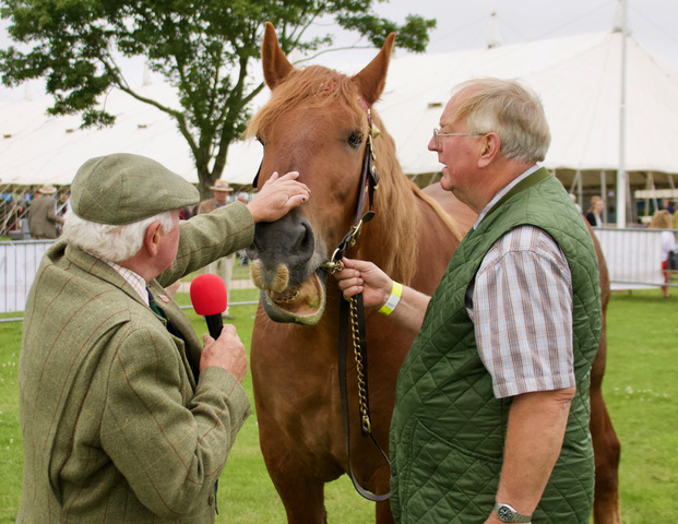 Horse Talk at the Norfolk Show