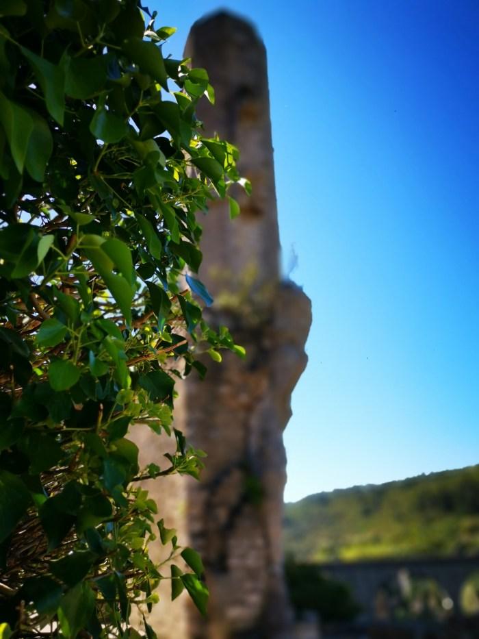 Candela de Minerve