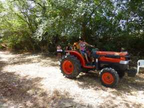 Tractorrentada 2013021