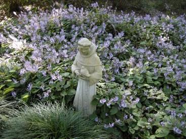 St. Frances of Assisi, patron saint of birds/conservation
