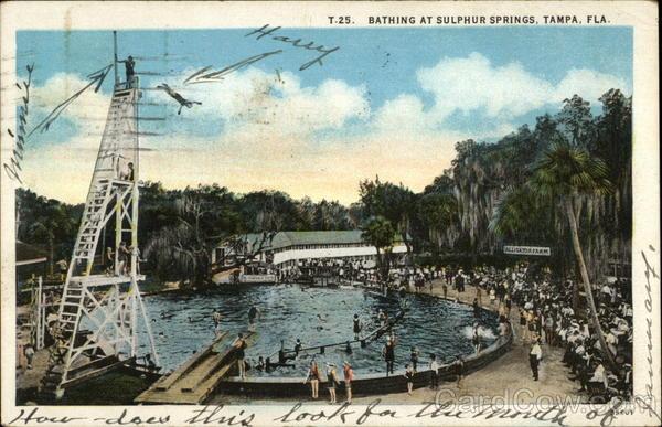 Bathing At Sulphur Springs Tampa FL