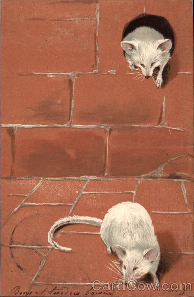Two White Mice With Mouse Hole In Brick Wall Mice
