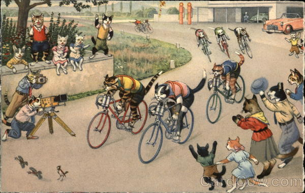 Cat Bicycle Road Race With Cheering Crowd Cats