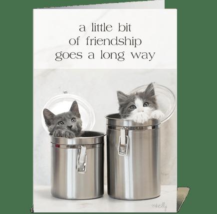 Little Bit of Friendship Kittens