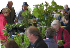 Members on a 4 day Tour with the Cardiganshire Horticultural Society based in Aberystwyth