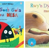 14 bilingual Welsh and English picture books my children love
