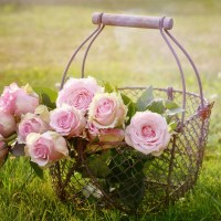 When you're a mum – but Mother's Day is difficult