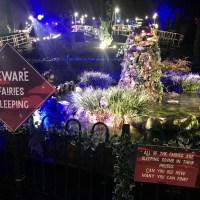 A review of Alexandra's Enchanted Garden – the magical light trail at Alexandra Park, Penarth