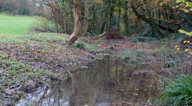 Event 112: Saturday 15 August — Stream Cleaning at Porthkerry Country Park