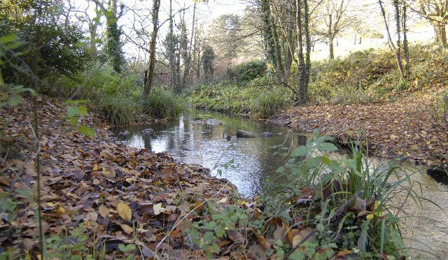 The stream at Fairwater Park