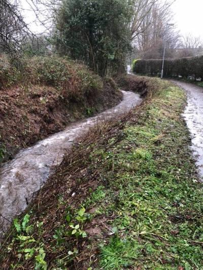 A nice clear stream