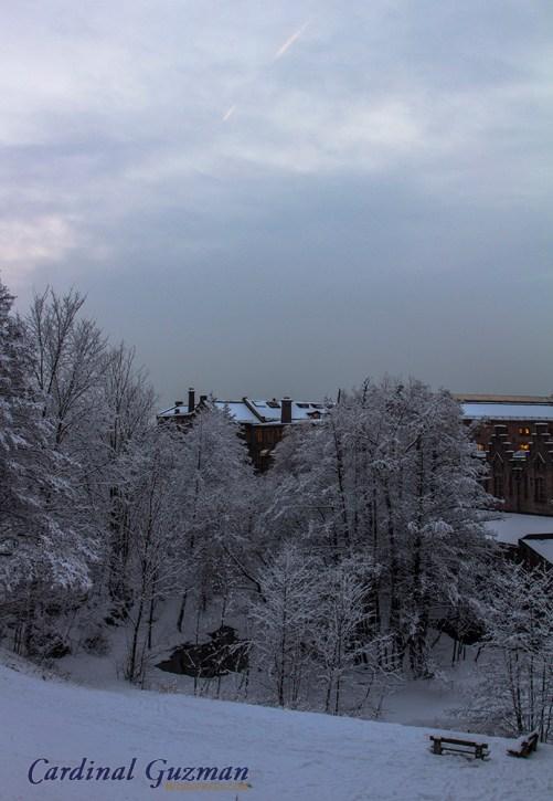 winter-oslo_8079