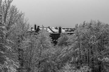 winter-oslo_8080
