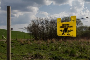 Werning! Electric fence. (typo: should have said advarsel - warning)