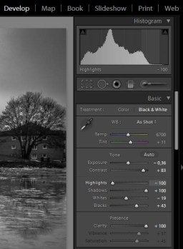 The first B&W settings.