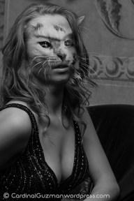 kitty_6634-03