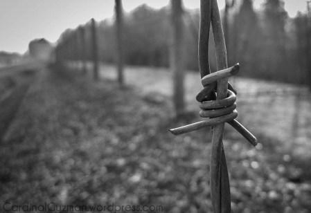Dachau_1216