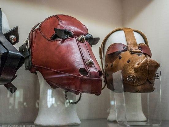 Cats & dog masks.