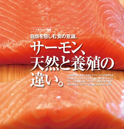 Wild versus farmed salmon. Photo and text by Romi Ichikawa.
