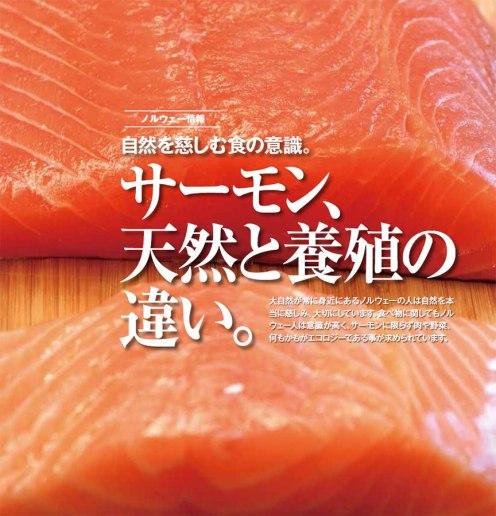 Wild versus farmed salmon. Photo and text by Romi Ichikawa.