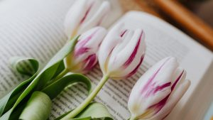 delicate fragrant flowers placed on page of book in room
