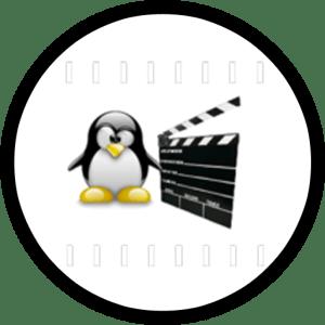Edición básica de video para presentaciones con Avidemux (I)
