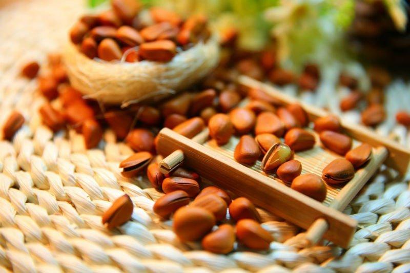 Câncer de pâncreas: ingesta adequada de magnésio pode preveni-lo