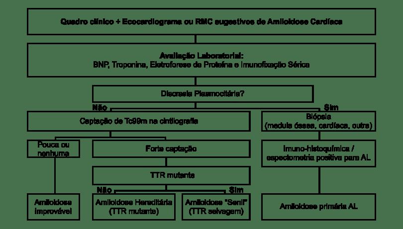 figura-de-investigacao-complementar-da-amiloidose