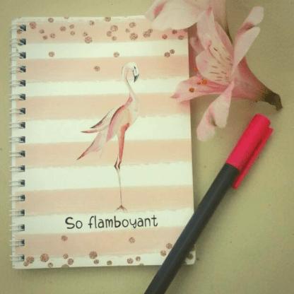 so flamboyant notebook