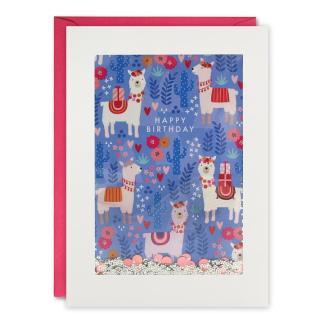 Happy birthday llama shakies card