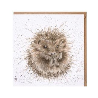 Awakening Hedgehog card