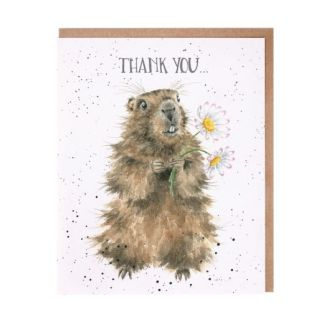 Thank You marmot card
